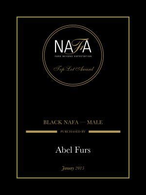 TOPLOT 2015 BLACK NAFA - MALE
